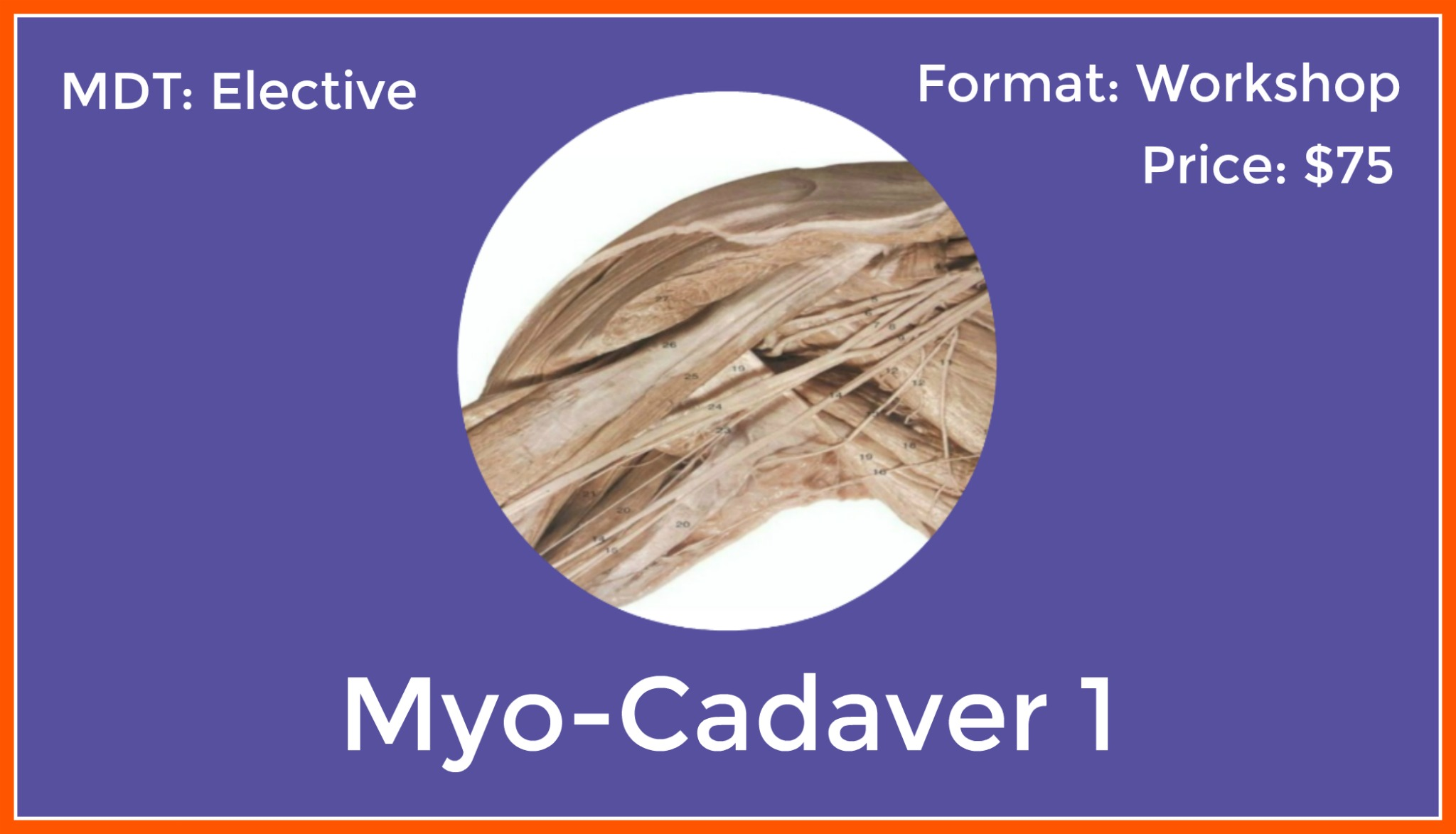 ANA-201: Myo-Cadaver-Shoulder
